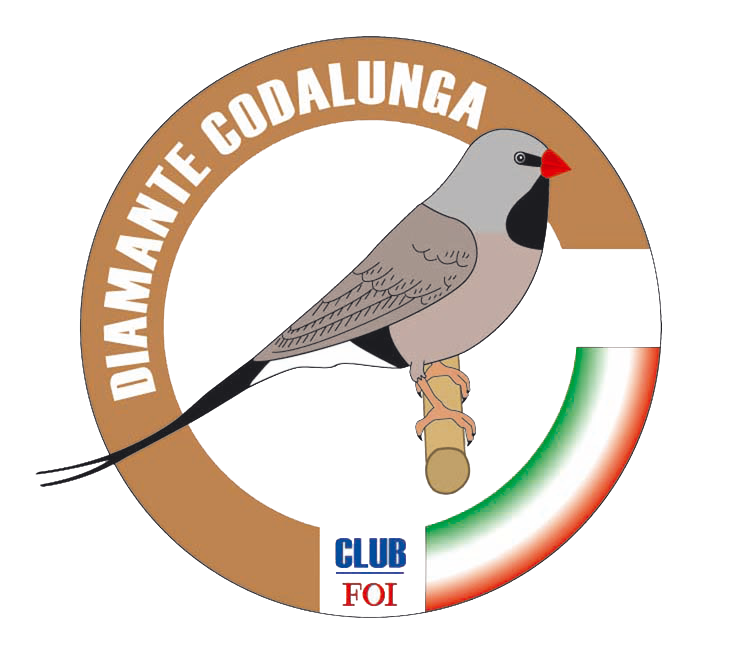 Club Diamante Codalunga